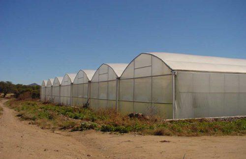 industria agricola y de alimentos
